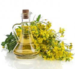 Řepkový olej