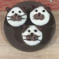 Cupcake Kočky