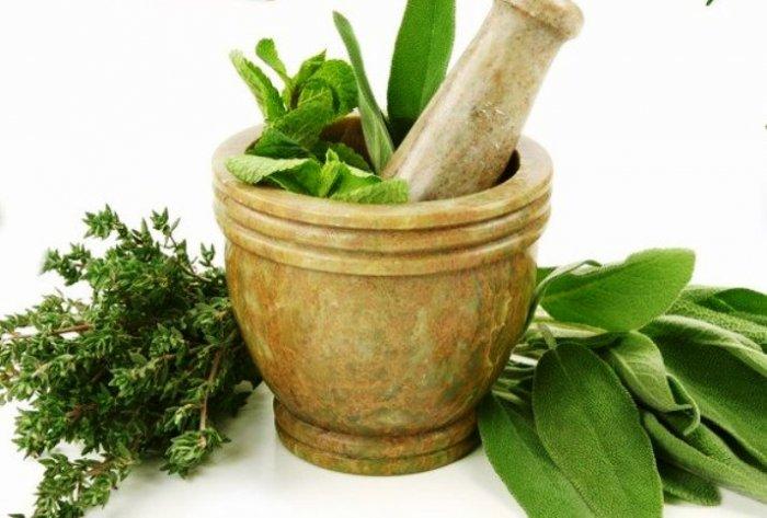 Uchovejte si bylinky na zimu