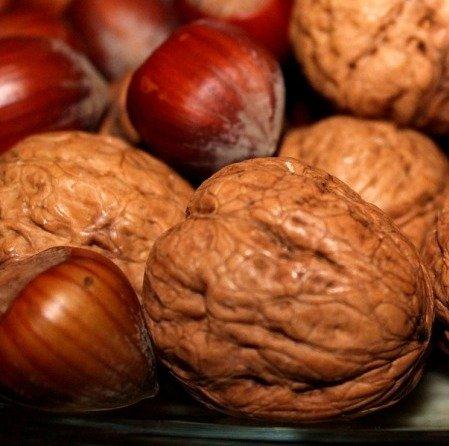 Obrázek lekce Vlašské a lískové ořechy