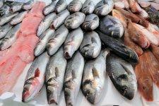 Obrázek lekce Ryby - nákup a příprava