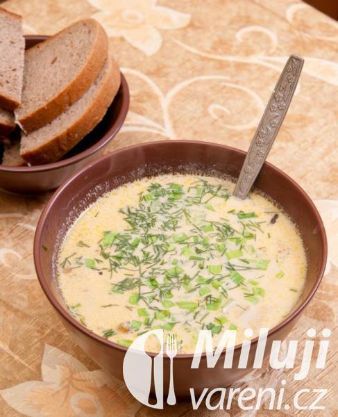 Řecká polévka se sýrem