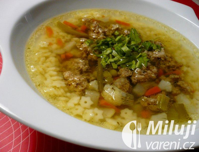 Rychlá hovězí polévka z mletého masa