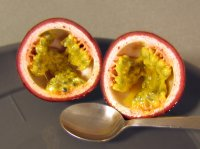 Exotický letní ovocný pohár