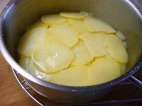 Holandské brambory