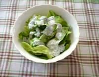 Hlávkový salát s jogurtem