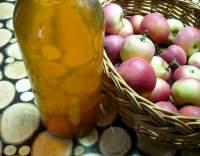 Jablečný mošt neslazený