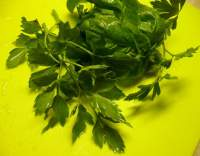 Brambory vařené s bylinkami